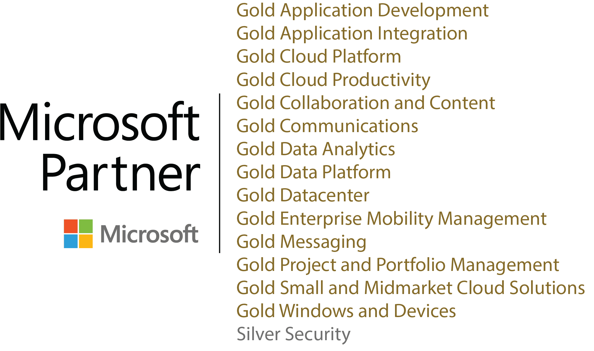 Peters Microsoft Partner Page